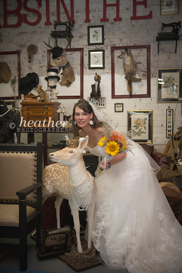 the bride and taxidermy
