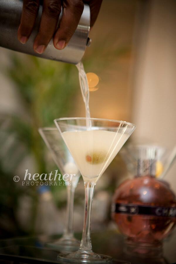 Premium Martini Bar